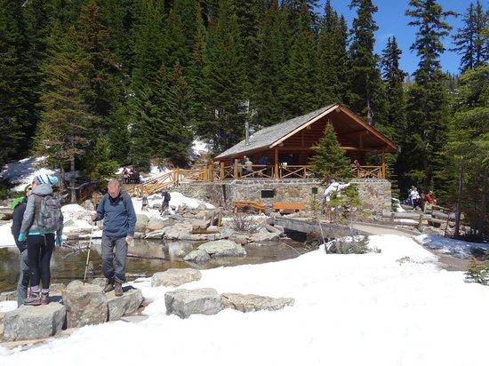 Lake Agnes Teahouse : Lake Agnes Tea House, 5 June 2014