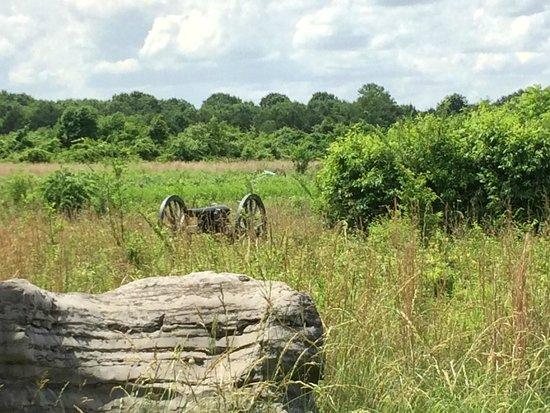 Stones River National Battlefield: Bread Basket