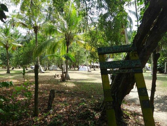 Camping Tayrona: Camping entrada