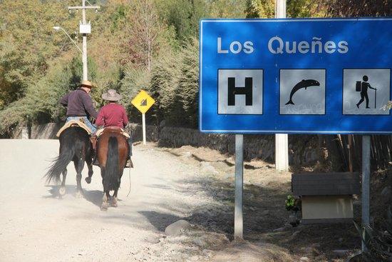 Los Quenes River Lodge & Cabanas: a caballo!