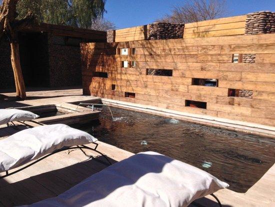 Lodge Andino Terrantai: Pool area