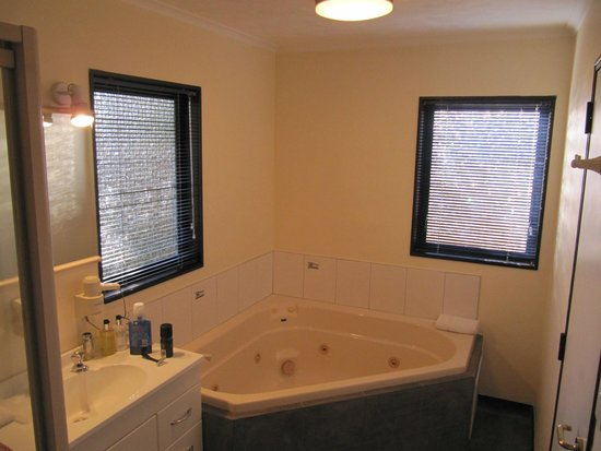 Palm City Motor Inn : Studio with spa bath