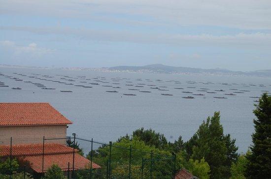 Hotel Bosque-mar: Vista do Quarte