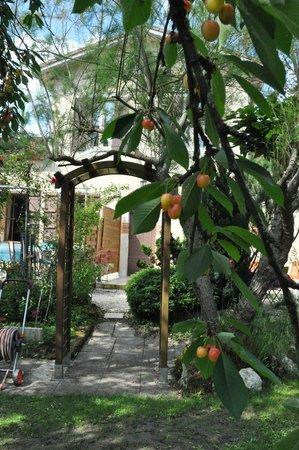L'Entre Garonne et L'Olivier: Gîte vu du Jardin