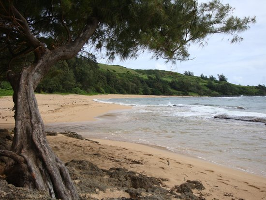 Kauai Photo Tours : secluded beach