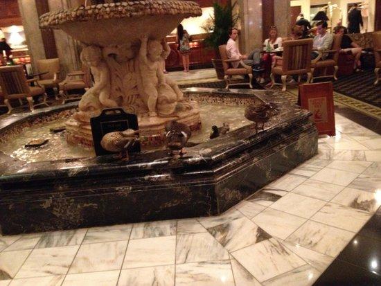 The Peabody Memphis: Ducks in the Peabody Hotel Lobby Fountain