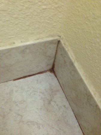 La Quinta Inn & Suites Downtown Conference Center: Bathroom Floor Slime