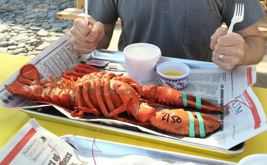 Alma Lobster Shop: The number on the claw is what he paid for that lobster