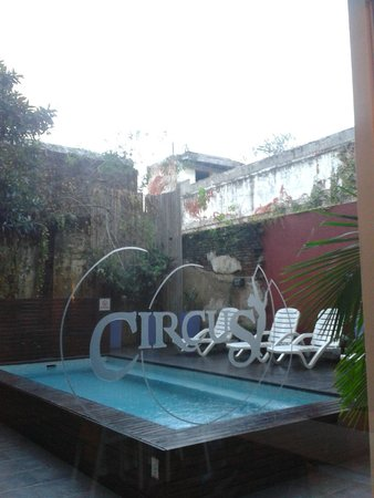 Circus Hostel & Hotel : Pool Area.
