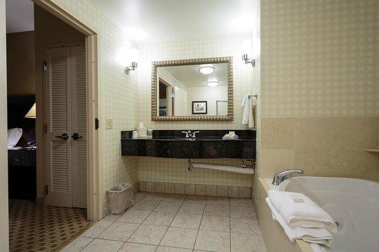 hilton garden inn cincinnati blue ash master bath - Hilton Garden Inn Blue Ash