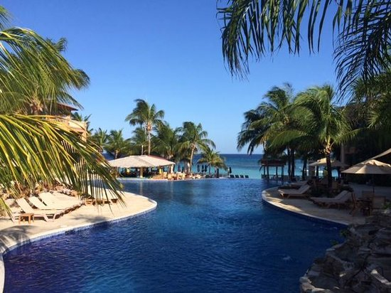 Infinity Bay Spa and Beach Resort: The Infinity pool was sublime, with a swimup bar