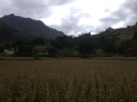 Royal Inka Hotel Pisac: Stunning View