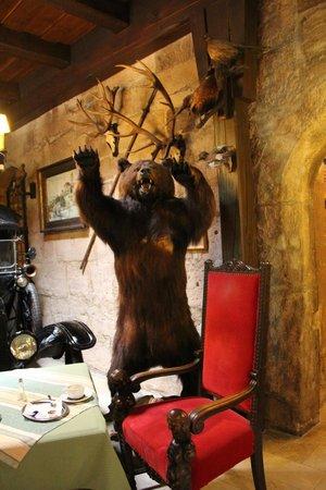 Hotel Burg Colmberg: Bear!