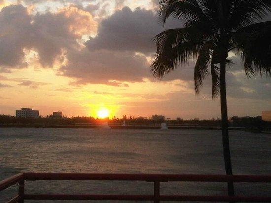 PULLMAN Miami Airport hotel : view