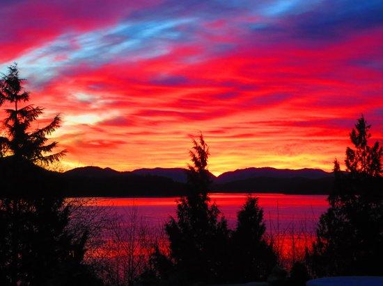 Meares Vista Inn: sunset