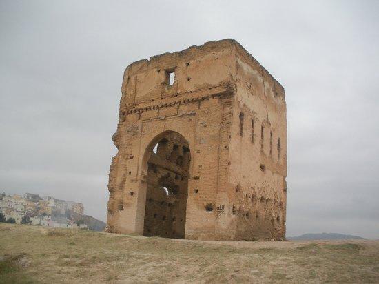 Tombe dei Merenidi: The tower