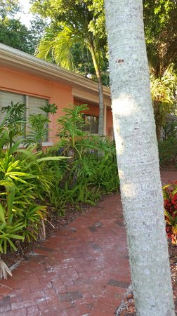 Siesta Key Bungalows: Outside in courtyard