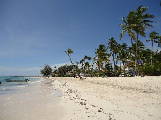 Vista Sol Punta Cana : Beach