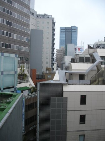 Ueno Touganeya Hotel: View from our room