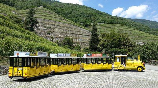 Il Trenino Giallo di Tirano: Il Trenino Giallo alla Tenuta la Gatta a Bianzone
