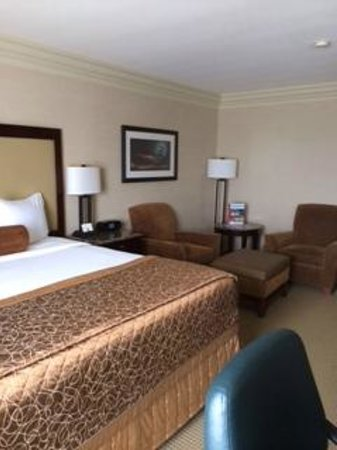 Madison Concourse Hotel and Governor's Club : Guest Room