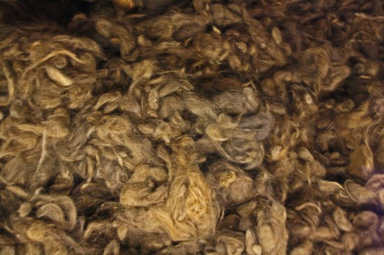Human Hair Ready To Be Made Into Clothing Picture Of