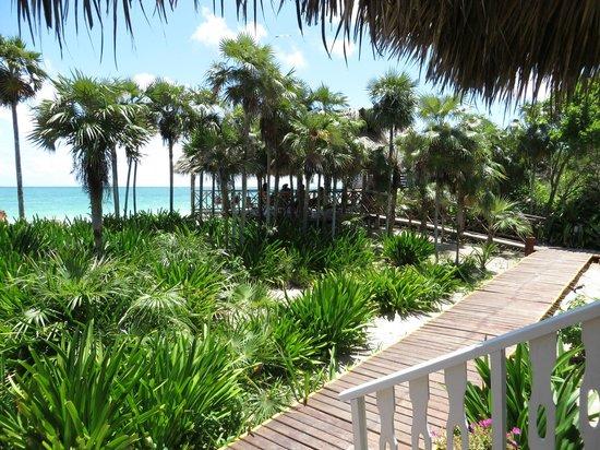 Melia Cayo Coco: Beach bar