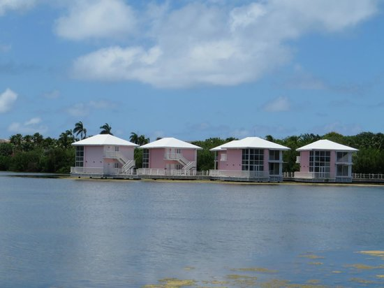 Melia Cayo Coco: Superior rooms - lagoon (do not worry, there is no smell!)