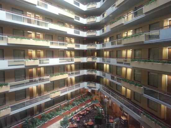 Embassy Suites by Hilton San Antonio Airport : Lobby
