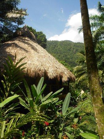 Villas Pico Bonito: simply amazing