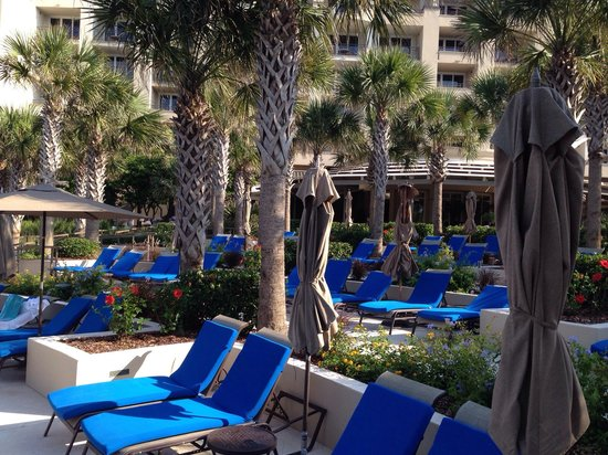 The Ritz-Carlton, Amelia Island: Pool side pic