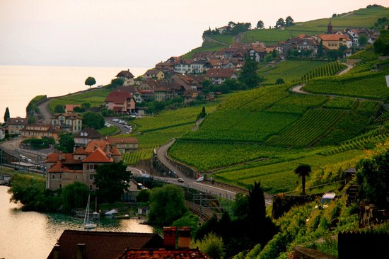 St-Saphorin-Lavaux, Schweiz: beautiful view of Chateau de Glerolles