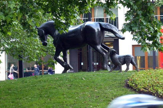 Animals in War Memorial : The horse leading the way