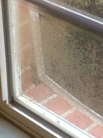 Extended Stay America - Raleigh - Northeast: mold and break in?