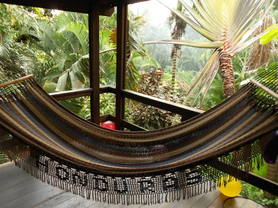 Mango Inn Resort: the hammock