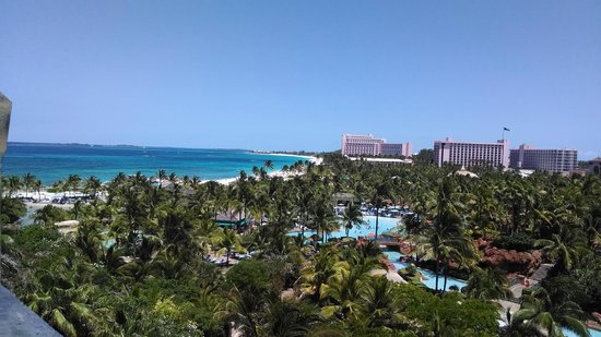 Atlantis, Coral Towers, Autograph Collection : Grounds and Ocean
