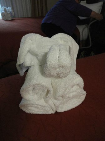 Country Inn & Suites by Radisson, Tampa East, FL: Our friend to welcome us on our bed!