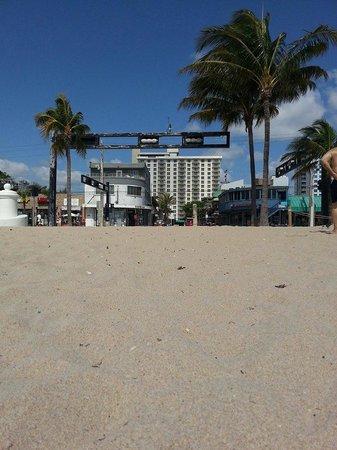 Fort Lauderdale Beach Resort : From the beach