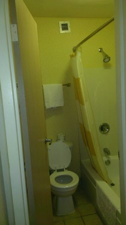 Baymont Inn & Suites Auburn Hills: Tight fit for toilet