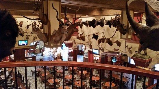 Buckhorn Cafe: From the balcony