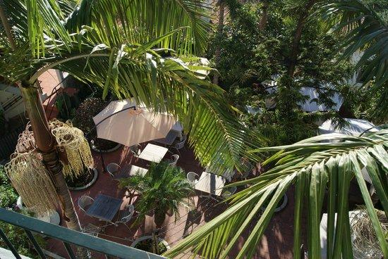 The Flame Tree Madeira : вид с балкона на терассу