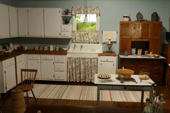 Schuyler, VA: kitchen