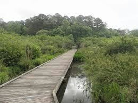 Choctaw Lake Campground : Boardwalk across the north end of the lake along the walking trail around the lake.