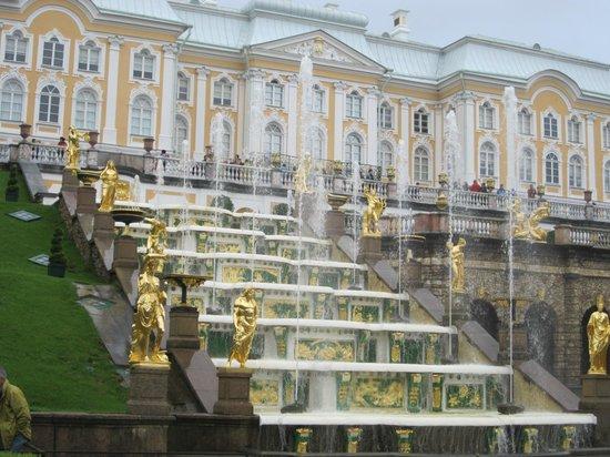 Dancing Bear Tours - Day Tours : Peterhof...   don't miss it!