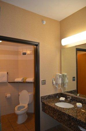 Drury Inn & Suites San Antonio North Stone Oak: Sink area
