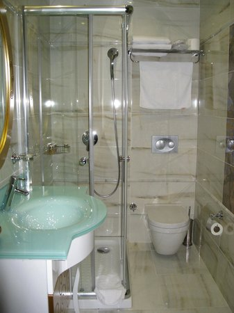 The Magnaura Palace: Pristine bathroom