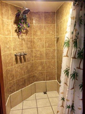 Bennett Bay Inn: Shower in Hawaiian Room - HUGE