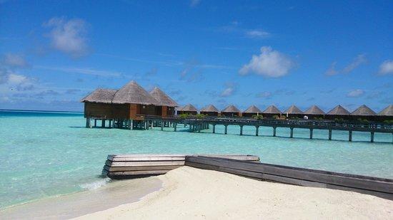 Baros Maldives: View of water villas