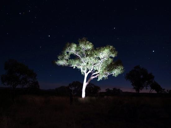 Karijini Eco Retreat : Eco Retreat nightshot