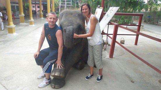 Hutsadin Elephant Foundation : Loved it